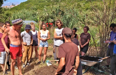 Making a soil mix for the seedlings