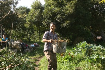Dennis carrying brown material with coppiced lemonwood in bottom left