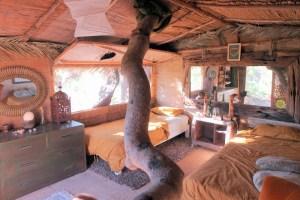 casita Verde Earthen Home
