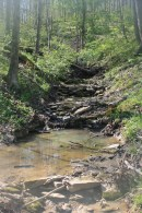 rock dams producing pools in stream at Treasure Lake, KY