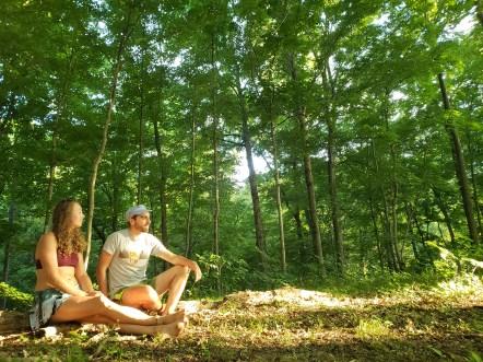 Treasure Lake Forest beings
