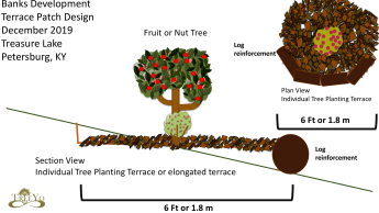 Individual Tree Planting terraces