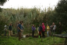 the class during our review session of the plantings seeing the earthworks, trees and guilds
