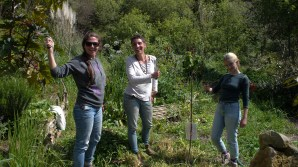 Chop and drop and planting crew, Kimberly, Raquel and Louisa