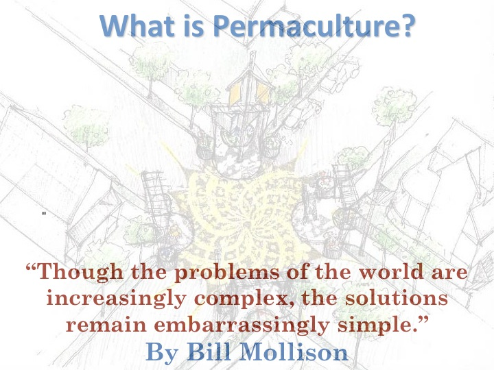 What is Permaculture? bill mollison quote