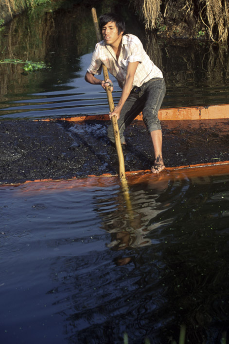 Scooping detritus from the canal floor to maintain fertility in the island beds