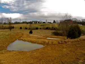 pocket pond with swales, greensleves farm kentucky, mark shepard design