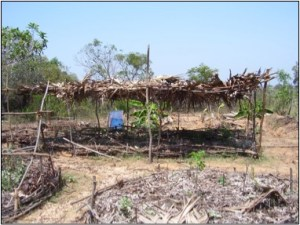 Shade structure for vegetable production in India