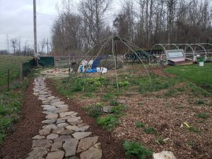Backyard Permaculture elements at Daniel and Colleens