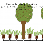 Permaculture Timber and Forestry animation 18