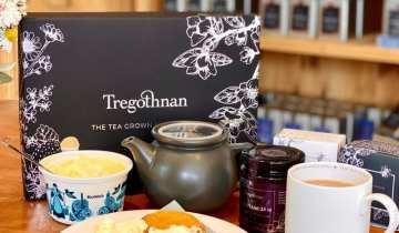 Tregothnan Luxury Cream Tea for Two