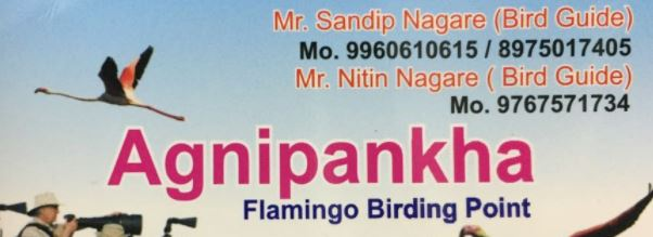 sandip nagare bigwan bird guide phone number