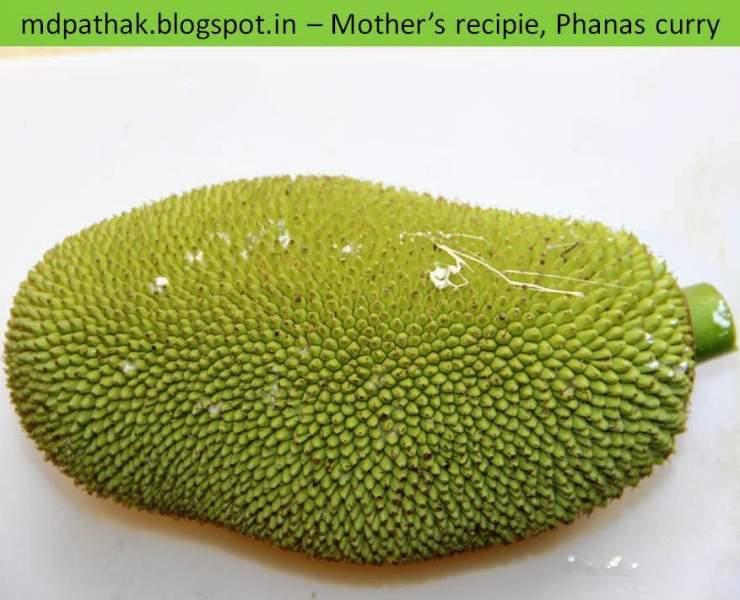 kachha phanas Unripe jackfruit