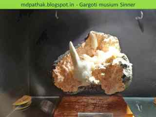 Crystals Gargoti museum, Sinnar