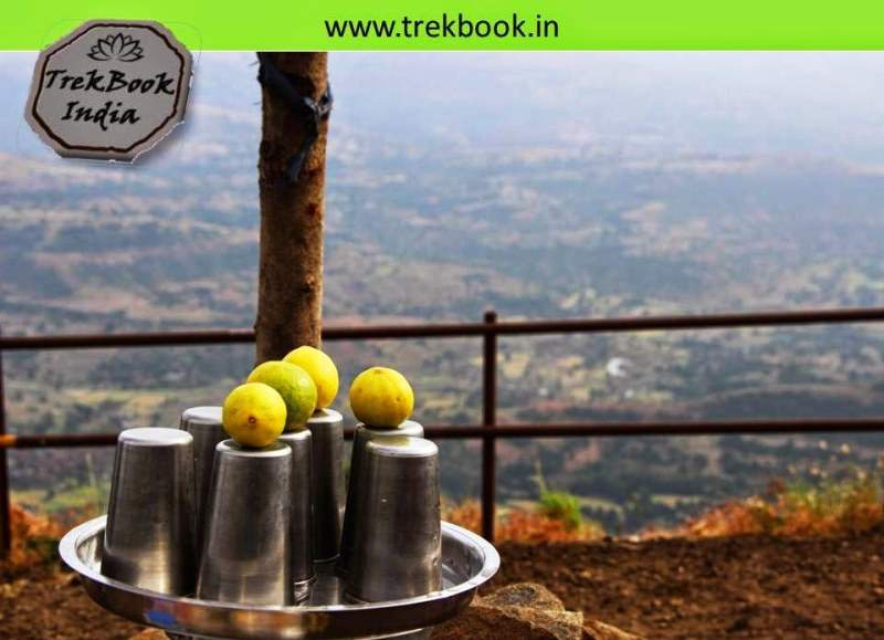 nimbu pani during trek