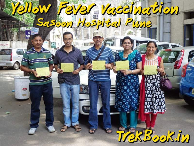 yellow fever vaccination sasoon hospital