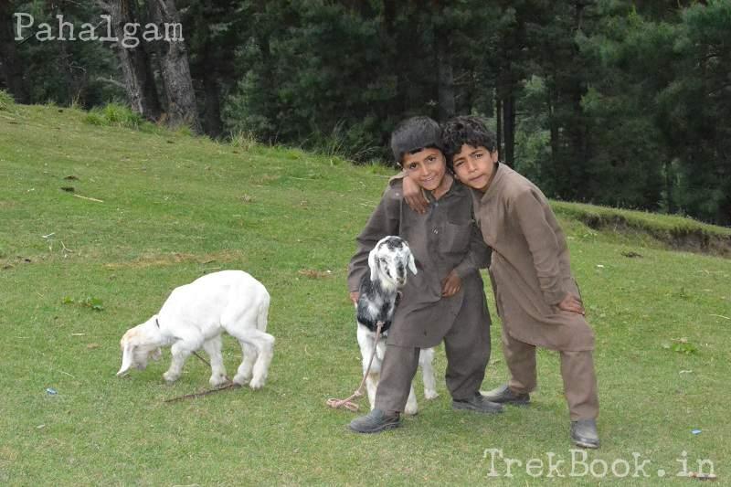 kashmiri-boys