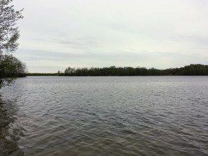 lake and trees at Ionia State Recreation Area