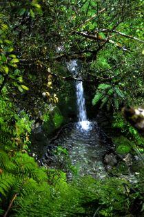 Medium waterfall
