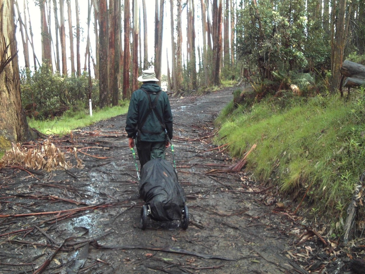 Along the Australian Alpine Walking Track (AAWT) in the rain.