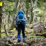 初めての登山におすすめの山10選 in 静岡県 & 山梨県