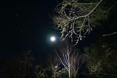 闇夜の登山道で月を仰ぎ見る