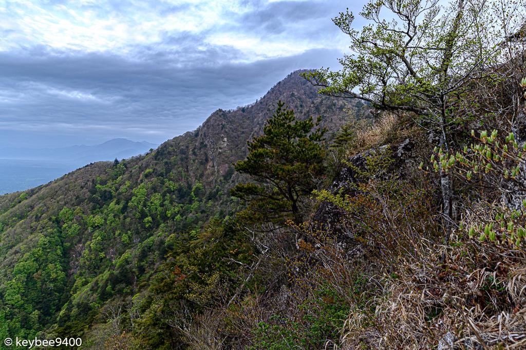 木々の先に見える十二ヶ岳