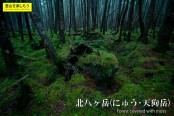 北八ヶ岳(にゅう、天狗岳)