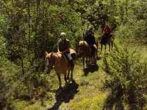 escursioni a cavallo a pasquetta