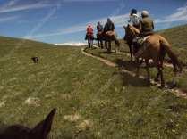 sentiero di montagna a cavallo