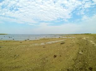 Roughly unique shores of Vilsandi