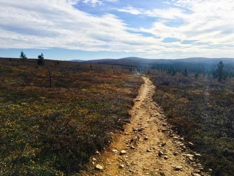 Urho Kekkosen kansallispuisto, UKK National Park, tie tunturiin