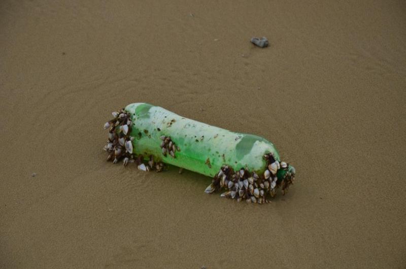 São muitos os objetos que aparecem incrustados de mariscos