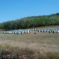 Wyprawa rowerowa Mołdawia 2015 - Dzień 8 - powrót przez Rumunię