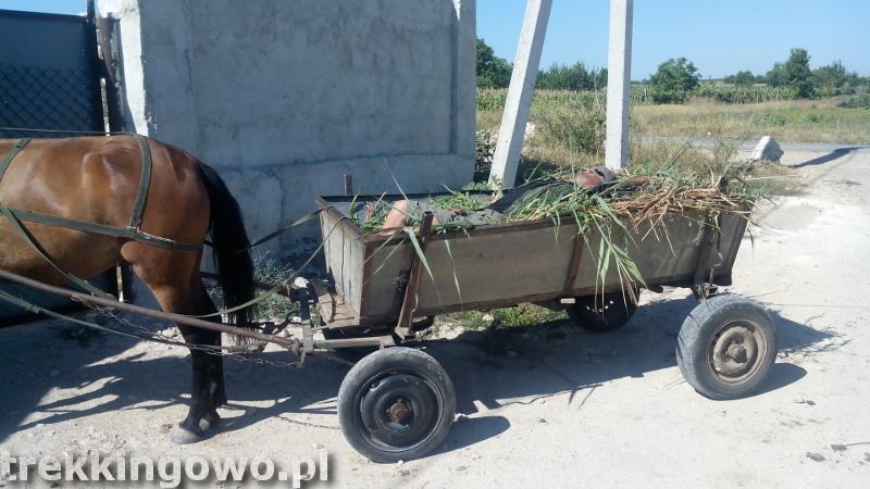 Mołdawia - Dzień 6 wóz widmo pijany woźnica trekkingowo