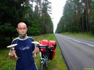 Wschodnia granica Polski, Podlasie - grzyby zbierane z drogi. Była też cała torba prawdziwków, z których pod wieczór ugotowaliśmy pyszny sos grzybowy! (2009)