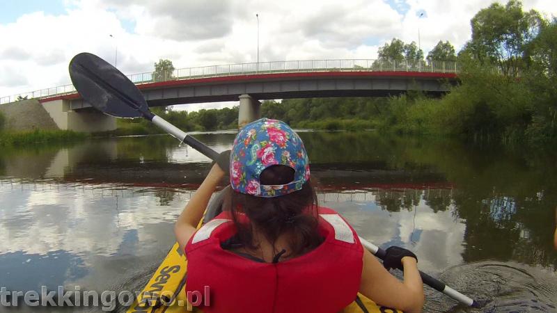 dzialoszyn most trekkingowo.pl