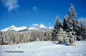 montagnes slovaques Slovaquie ski neige trek trekking  randonnée