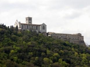 La Basilica vista dal Bosco di Francesco