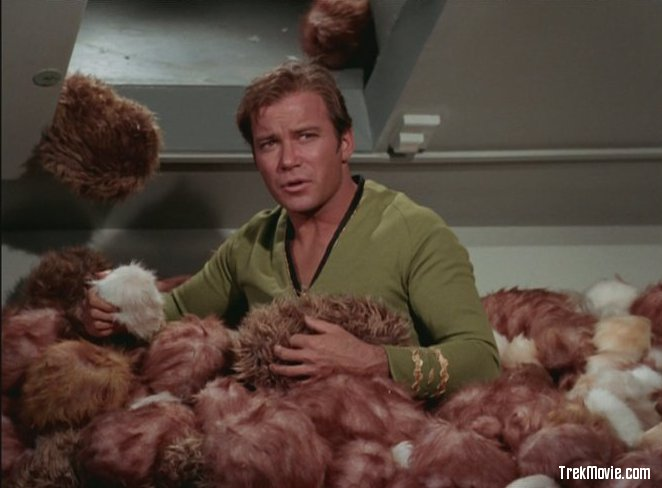 Capt. James T. Kirk covered in Tribbles.