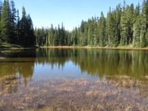 Archer Lake - Indian Heaven