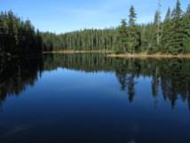 Bear Lake - Indian Heaven