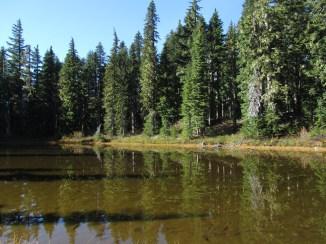 Deer Lake Indian Heaven