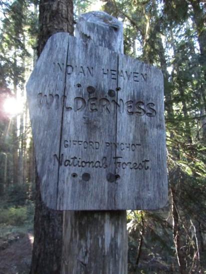Indian Heaven Wilderness Sigh