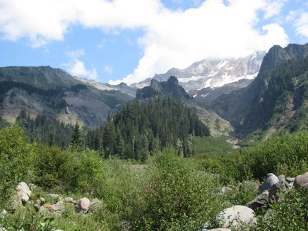 A view up from Muddy Forks stream crossing to Mt. Hood.