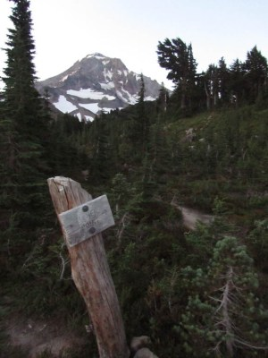 Trail to McNeil Point