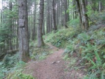Start of the PCT Section