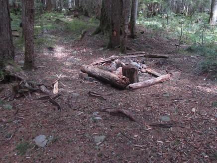 Hunter Camp