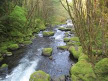 Looking down stream at Herman Creek from the bridge.