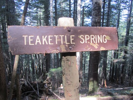 The Sign for Teakettle Spring.